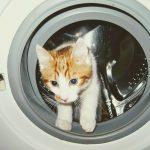 aceto per pulire la lavatrice