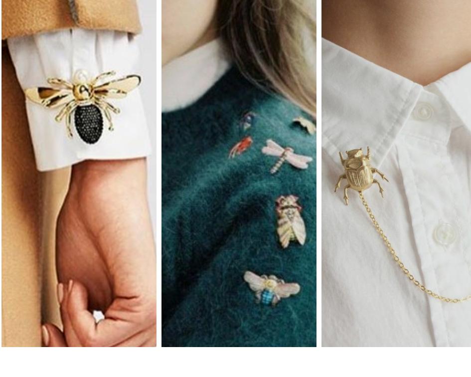 Accessori insetto dove trovarli e come portarli